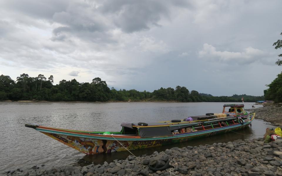 Heart_of_Borneo_002