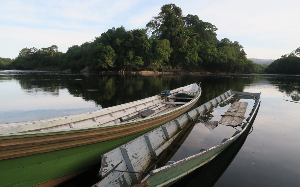 Heart_of_Borneo_007
